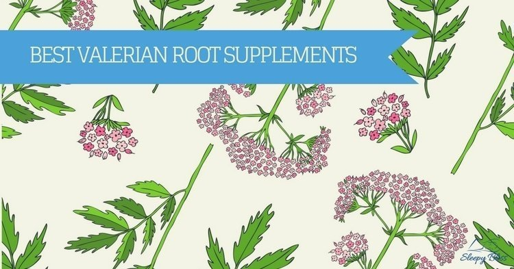 Best Valerian Root Supplement Reviews